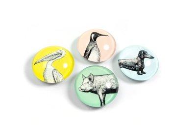 leuke glazen magneten 'animal' - set van 4 stuks