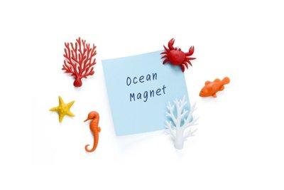 Ocean Ecology Magneten - gemaakt van gerecyclede petflessen - 6 stuks per set