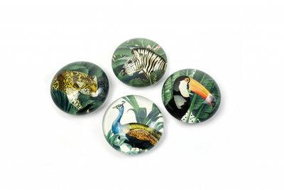 Mooie glazen magneten 'Royal Garden' - set van 4 stuks