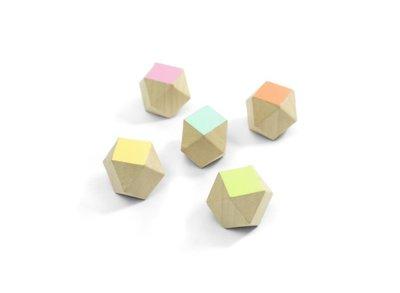 Houten veelhoek blokjes magneten Polygon- set van 5 stuks