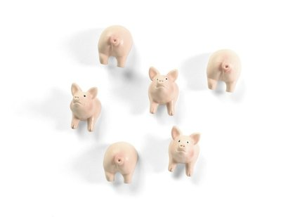 Varkens magneten Piggy - set van 6 leuke varkentjes