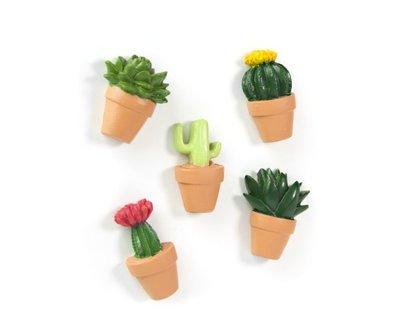 Cactus magneten - 5 sterke magneten per set