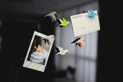 Hummingbird Magneten Pastel - set van 6 stuks