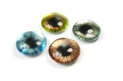 Prachtige Iris magneten - Eye Iris - set van 4 glazen magneten