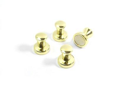 pion magneet mini max goud