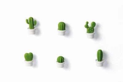 cactus magneten
